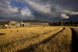 Ein Blick auf die Glenfarclas-Brennerei. Foto: John Paul